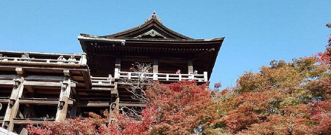 Lean Japan Study Tour, VIII edizione, 2017